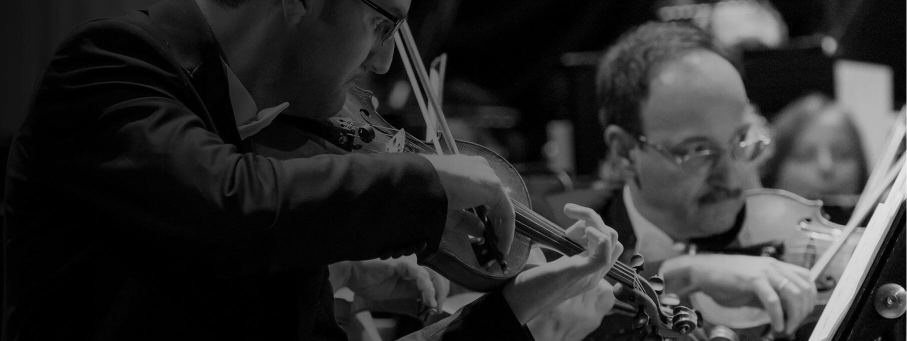 Audiție pentru ocuparea posturilor de Artist instrumentist, vioara I și vioara a II-a, în cadrul Compartimentului Orchestră